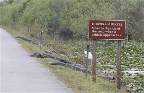 Funny Florida - The State Of Florida Photo (31803129) - Fanpop