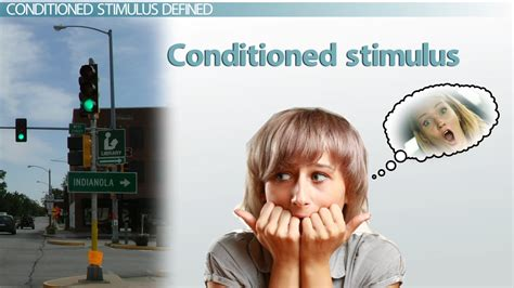 Conditioned Stimulus: Examples & Definition - Video